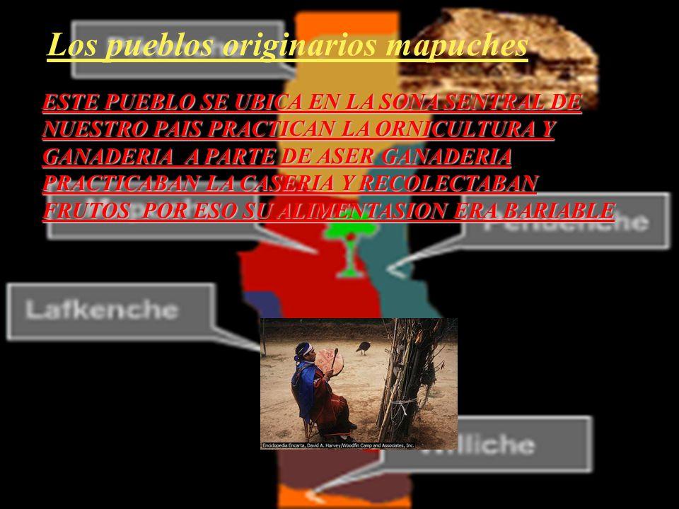 Los pueblos originarios mapuches ESTE PUEBLO SE UBICA EN LA SONA SENTRAL DE NUESTRO PAIS PRACTICAN LA ORNICULTURA Y GANADERIA A PARTE DE ASER GANADERIA PRACTICABAN LA CASERIA Y RECOLECTABAN FRUTOS POR ESO SU ALIMENTASION ERA BARIABLE