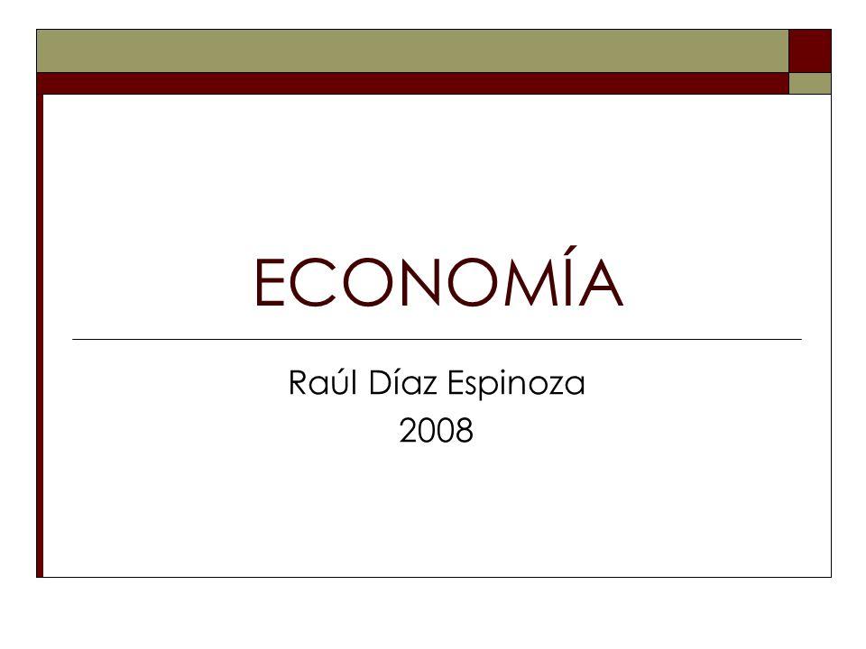 ECONOMÍA Raúl Díaz Espinoza 2008