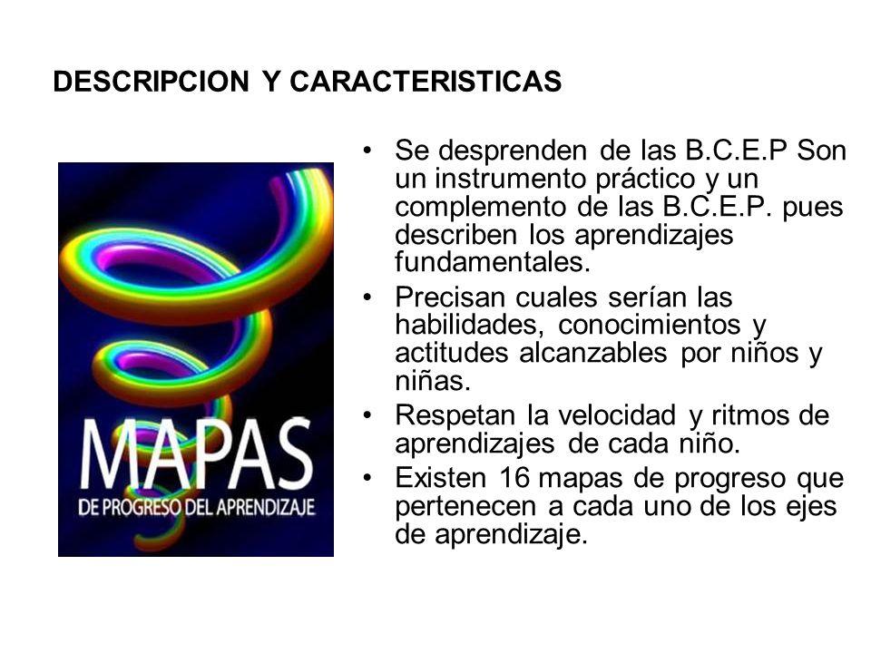 DESCRIPCION Y CARACTERISTICAS Se desprenden de las B.C.E.P Son un instrumento práctico y un complemento de las B.C.E.P. pues describen los aprendizaje