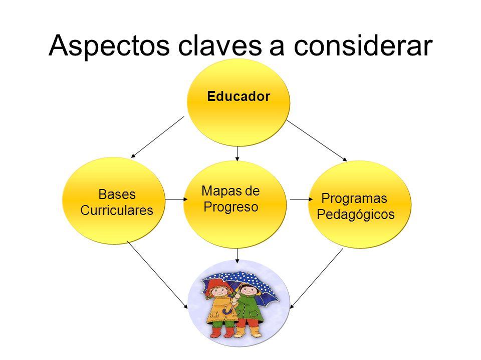 Establece una relación sinérgica entre curriculum, didáctica y evaluación.
