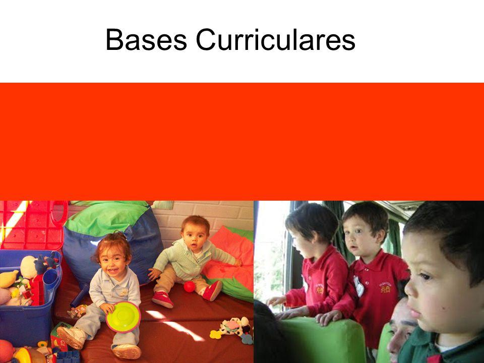 Sus orientaciones son generales, por lo cual cada institución debe especificarlas para que sean acordes a la diversidad y contextos en que se trabaja.