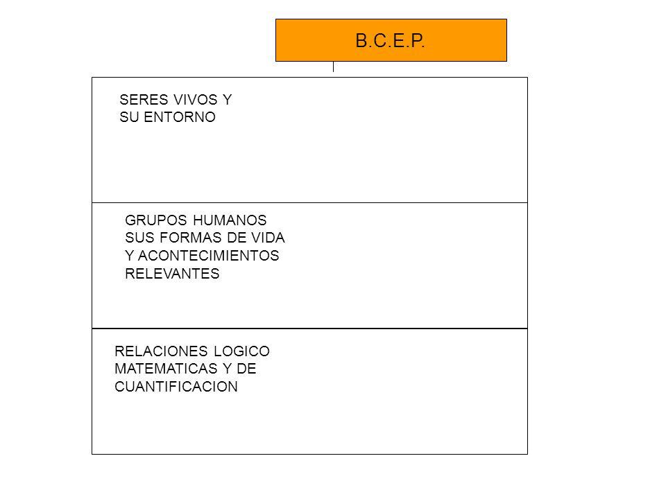 UTILIDAD PEDAGÓGICA: Son un material de apoyo a la enseñanza que tiene como propósito facilitar y operacionalizar la implementación de las Bases Curriculares de la educación parvularia (BCEP) Son flexibles y adaptables a los diferentes contextos educativos.