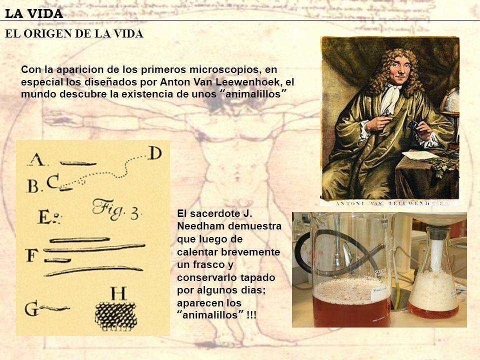 LA VIDA EL ORIGEN DE LA VIDA Con la aparicion de los primeros microscopios, en especial los diseñados por Anton Van Leewenhoek, el mundo descubre la e