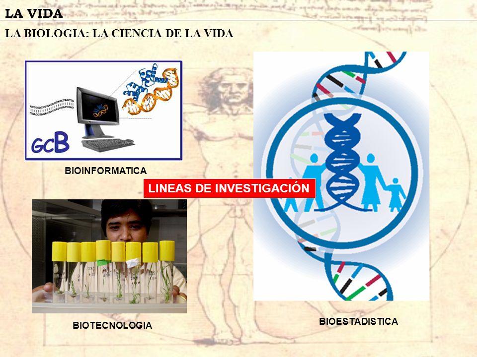 LA VIDA LA BIOLOGIA: LA CIENCIA DE LA VIDA BIOINFORMATICA BIOTECNOLOGIA BIOESTADISTICA LINEAS DE INVESTIGACIÓN