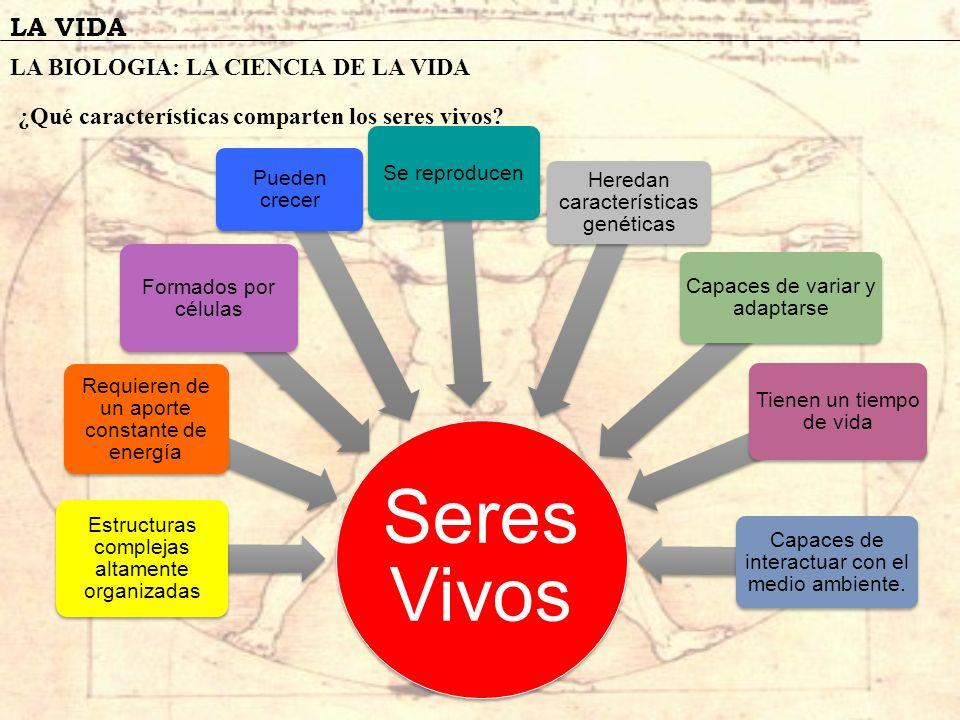 LA VIDA CARACTERISTICAS DE LOS SERES VIVOS 1- Son estructuras complejas altamente organizadas, formadas por los bioelementos : C, H, O y N..