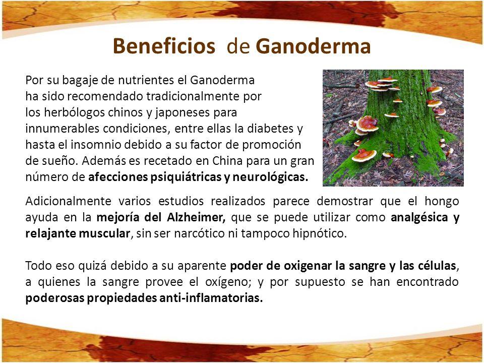 Beneficios de Ganoderma Por su bagaje de nutrientes el Ganoderma ha sido recomendado tradicionalmente por los herbólogos chinos y japoneses para innum
