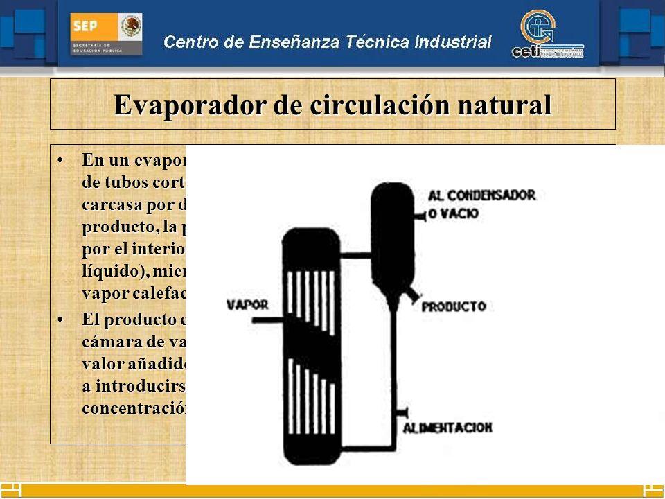 Evaporador de circulación natural En un evaporador de circulación natural se distribuyen una serie de tubos cortos verticales (calandria de tubos) den