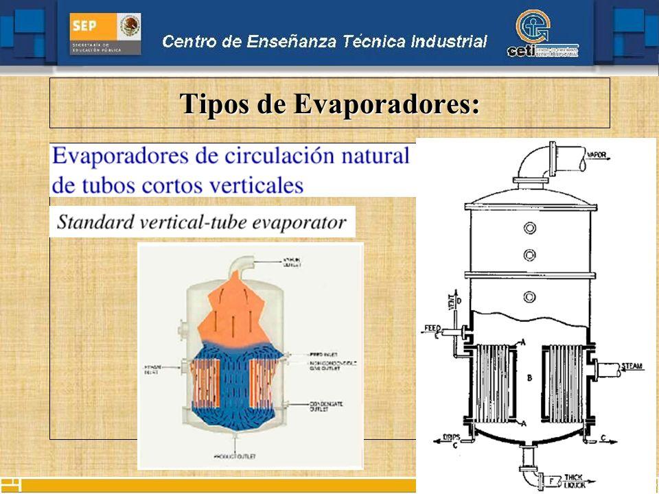 Tipos de Evaporadores De Película AgitadaDe Película Agitada