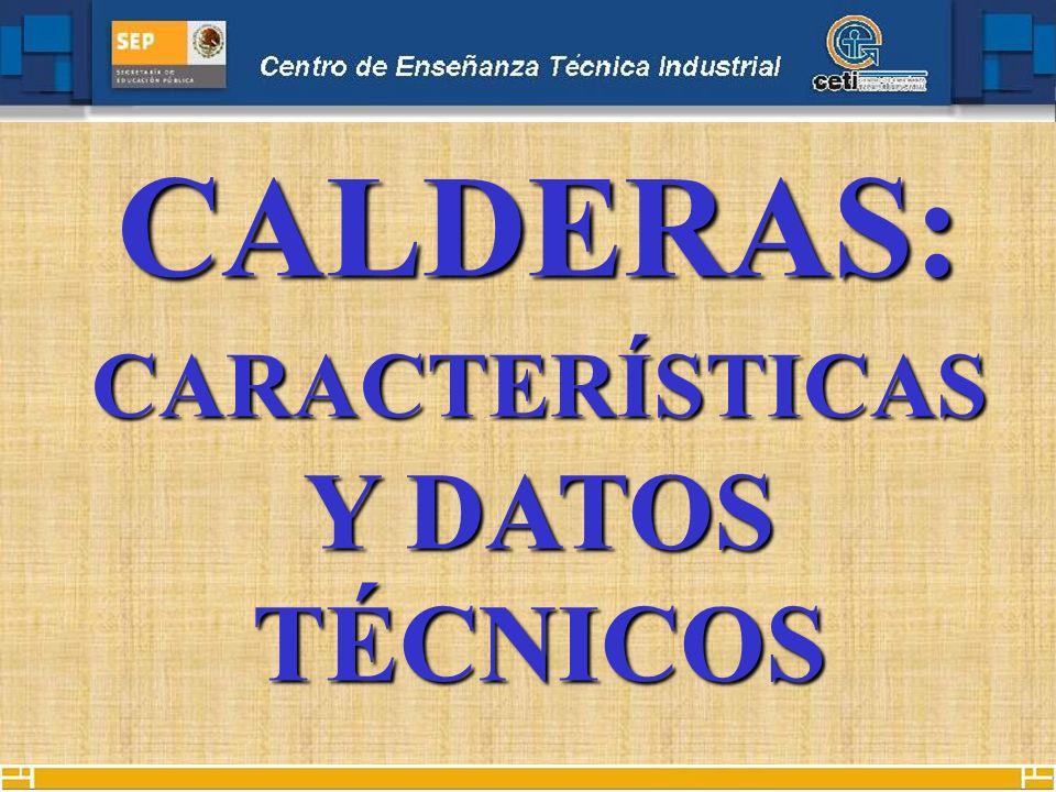 CALDERAS: CARACTERÍSTICAS Y DATOS TÉCNICOS