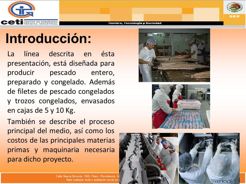 Introducción: La línea descrita en ésta presentación, está diseñada para producir pescado entero, preparado y congelado.