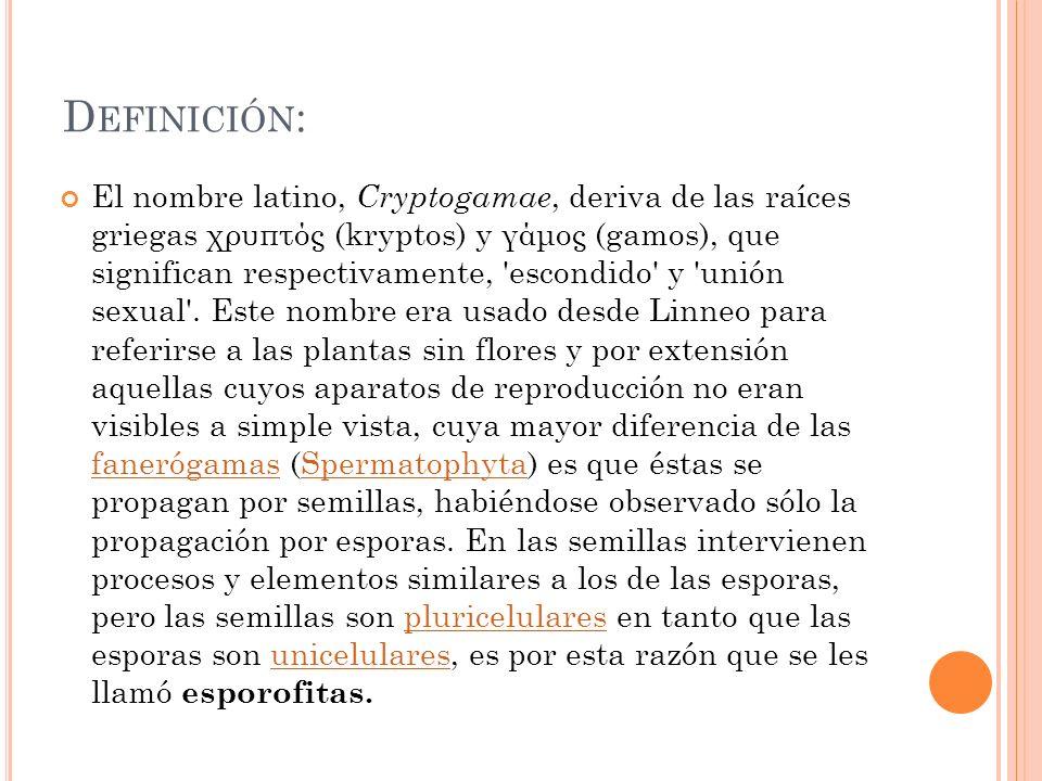 D EFINICIÓN : El nombre latino, C ryptogamae, deriva de las raíces griegas χρυπτός (kryptos) y γάμος (gamos), que significan respectivamente, 'escondi