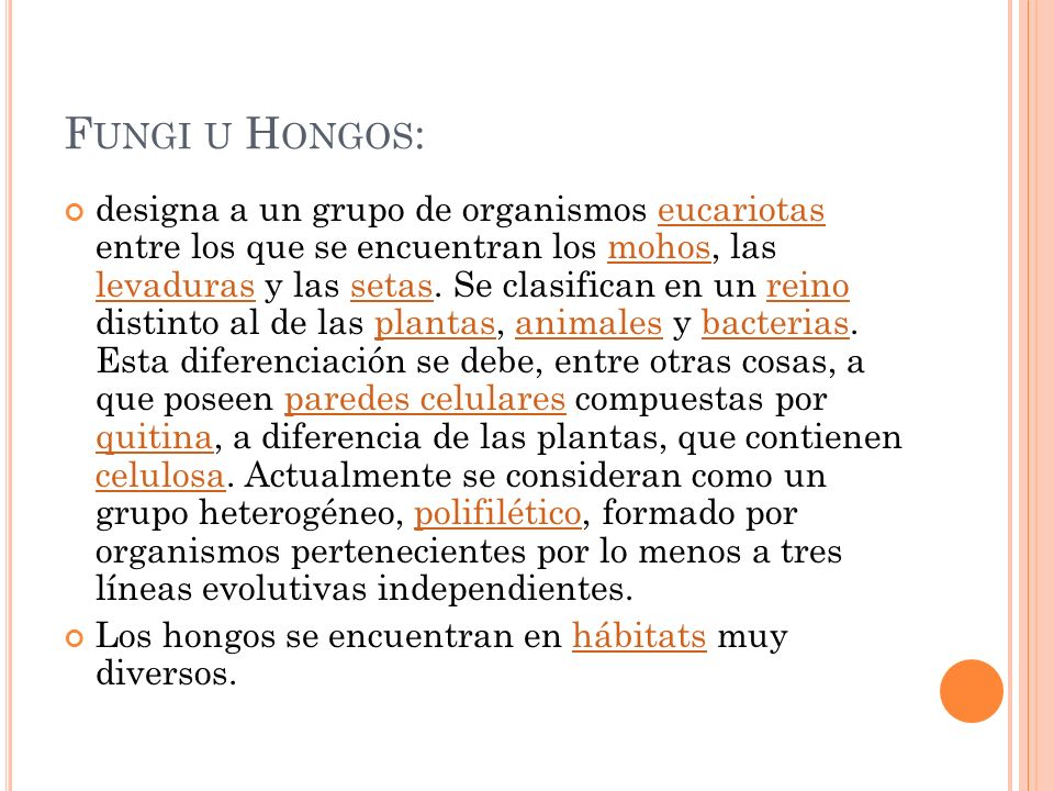 F UNGI U H ONGOS : designa a un grupo de organismos eucariotas entre los que se encuentran los mohos, las levaduras y las setas. Se clasifican en un r