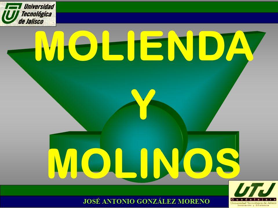 MOLIENDA Y MOLINOS JOSÉ ANTONIO GONZÁLEZ MORENO