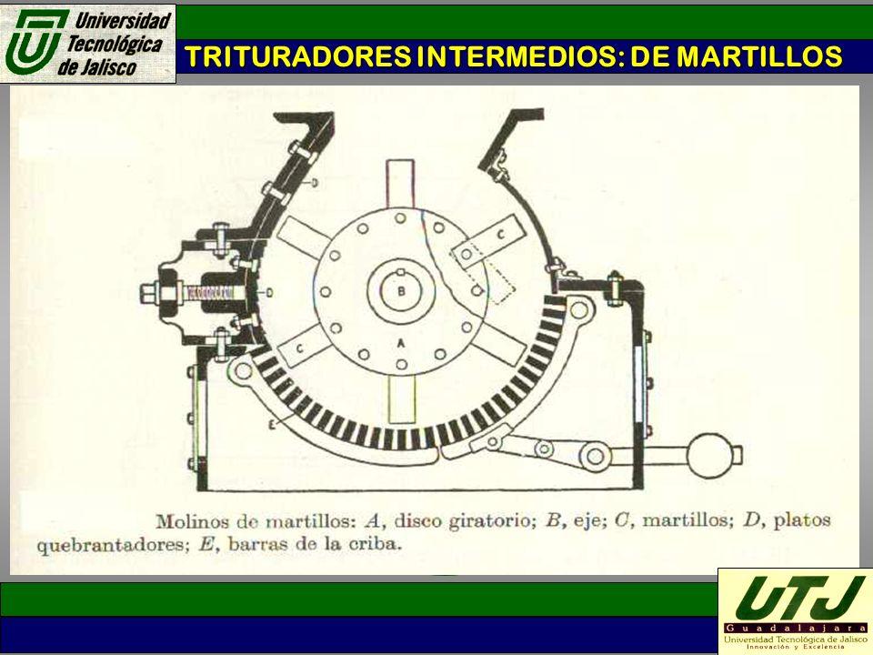TRITURADORES INTERMEDIOS: DE MARTILLOS