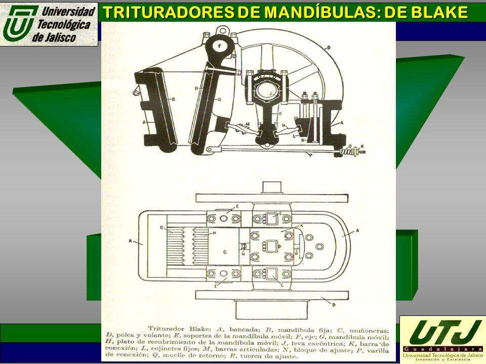 TRITURADORES DE MANDÍBULAS: DE BLAKE