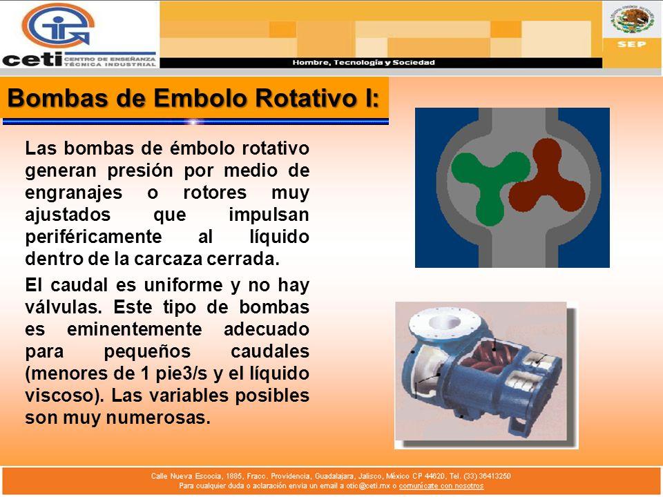 Bombas de Embolo Rotativo II: La Bomba de émbolo Rotativo, al igual que la alternativa, operan sobre el principio de desplazamiento positivo, es decir, que bombean una determinada cantidad de fluido (sin tener en cuenta las fugas independientemente de la altura de bombeo).