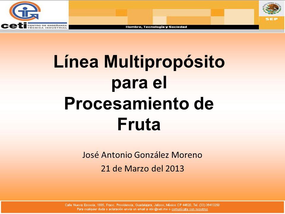 Línea Multipropósito para el Procesamiento de Fruta José Antonio González Moreno 21 de Marzo del 2013