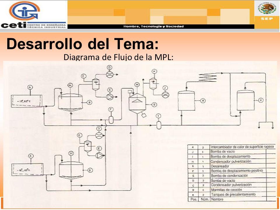 Desarrollo del Tema: Diagrama de Flujo de la MPL: