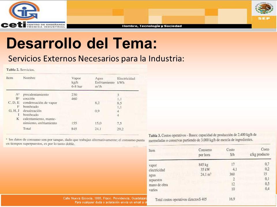 Desarrollo del Tema: Servicios Externos Necesarios para la Industria: