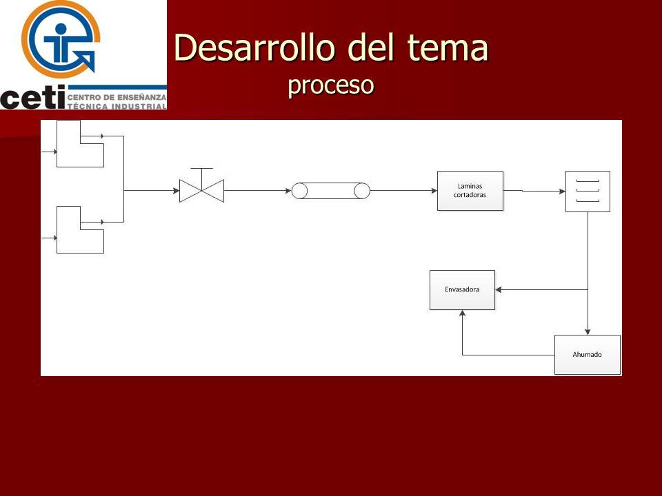 Desarrollo del tema proceso