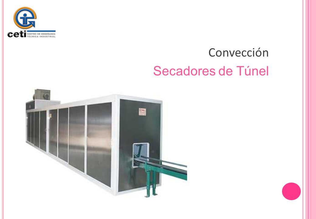Convección Secadores de Túnel