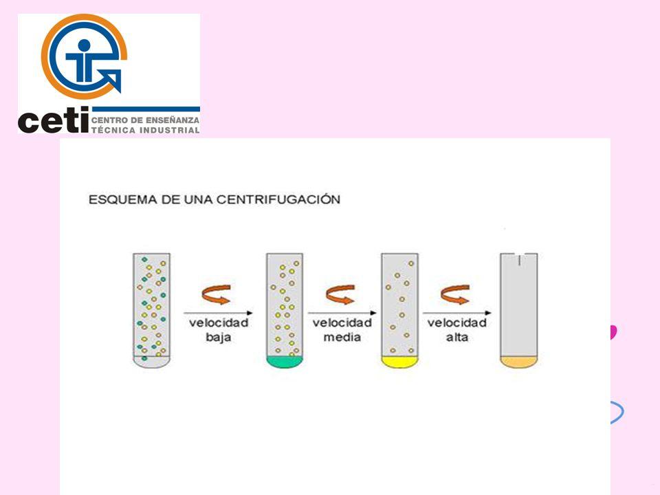 Centrifugación Diferencial.Se basa en la diferencia en la densidad de las moléculas.
