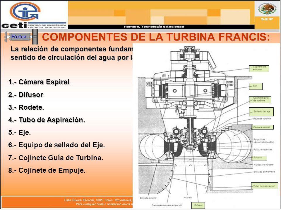 COMPONENTES DE LA TURBINA FRANCIS: