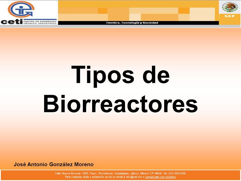 Tipos de Biorreactores José Antonio González Moreno