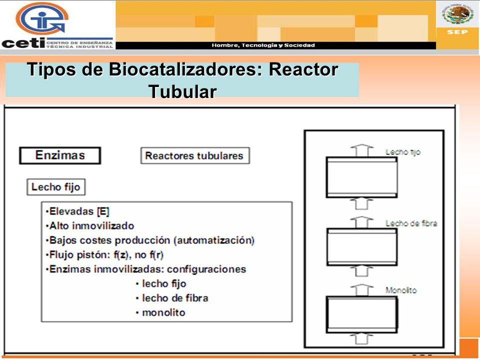 Tipos de Biocatalizadores: Reactor Tubular