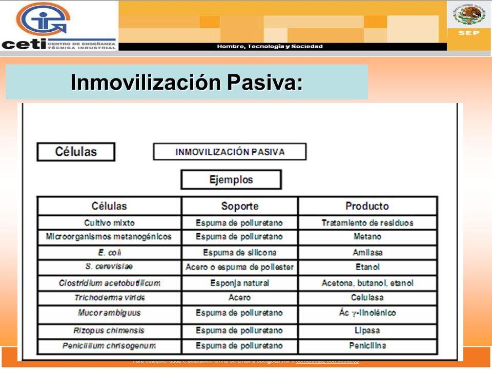 Inmovilización Pasiva: