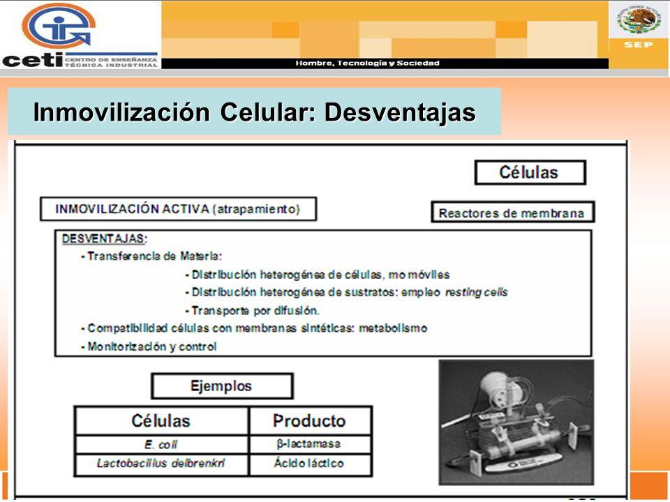 Inmovilización Celular: Desventajas