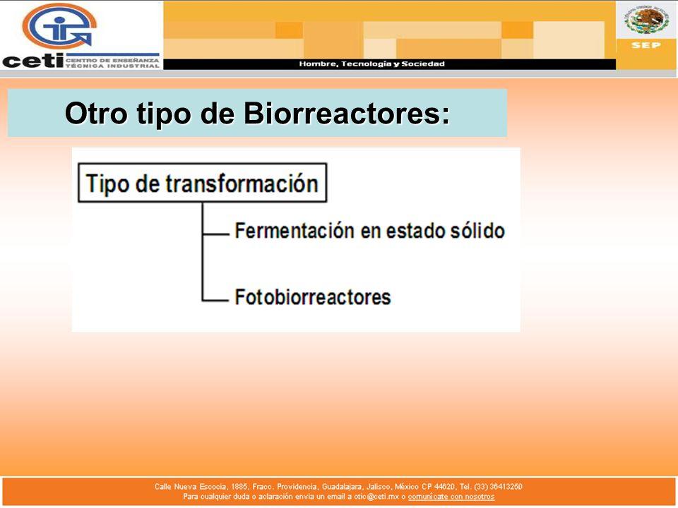 Otro tipo de Biorreactores: