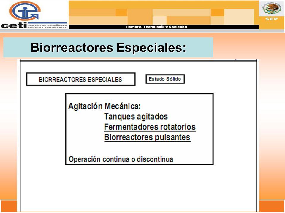Biorreactores Especiales: