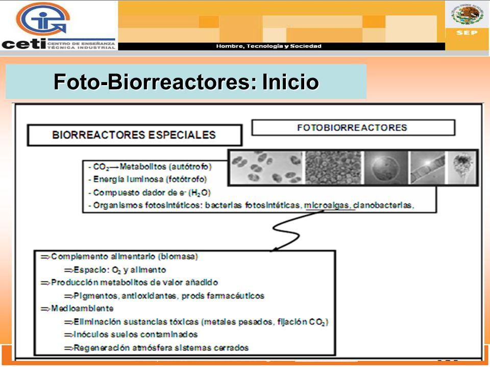Foto-Biorreactores: Inicio