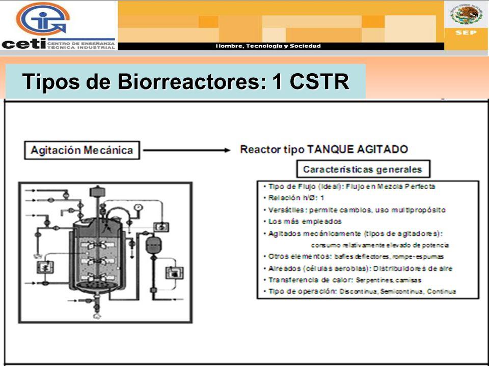 Tipos de Biorreactores: 1 CSTR