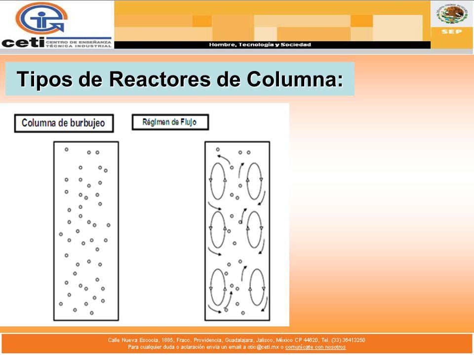 Columna de Burbujeo: