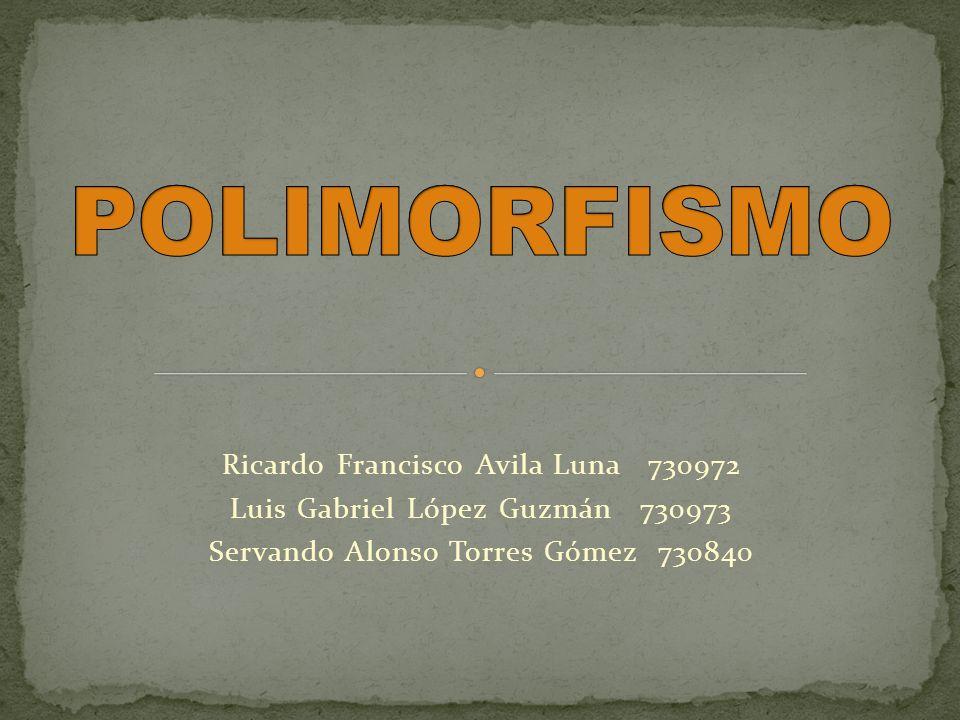 Polimorfismo proviene del griego y significa que posee varias formas diferentes.