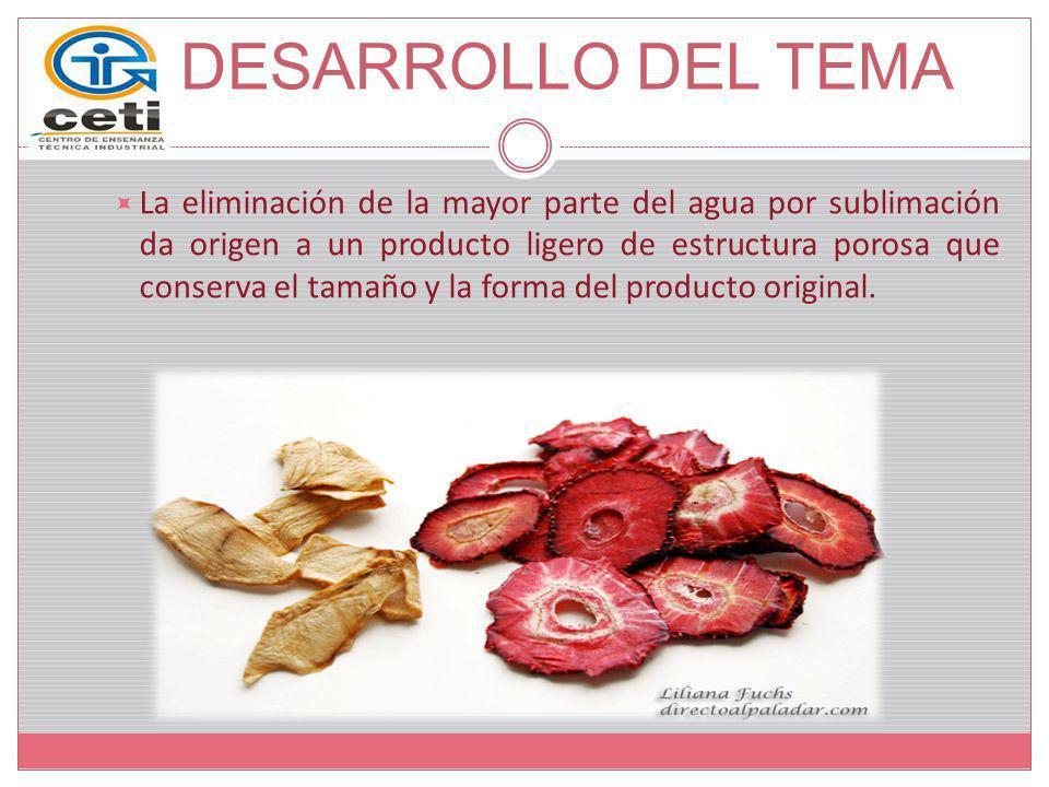 DESARROLLO DEL TEMA Elementos básicos de un sistema de liofilización: