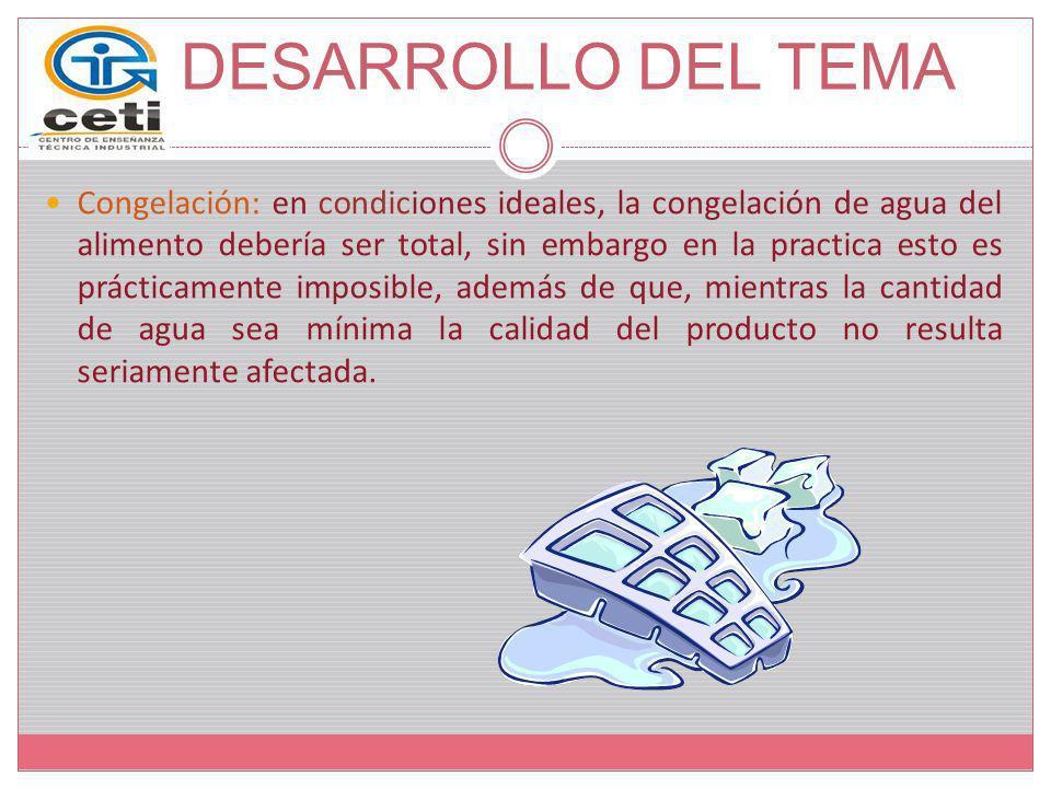 DESARROLLO DEL TEMA Liofilizadores Discontinuos: Los componentes esenciales de un liofilizador discontinuo son una cámara de vacío, un sistema de vacío y un sistema de calentamiento.