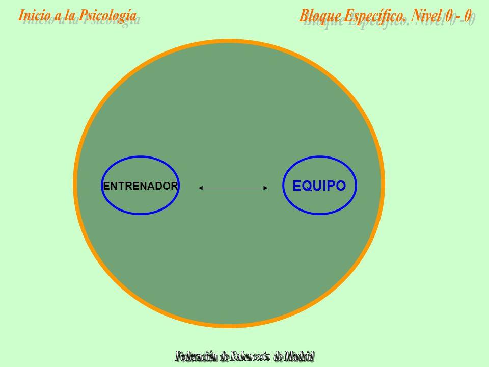 EQUIPO ENTRENADOR