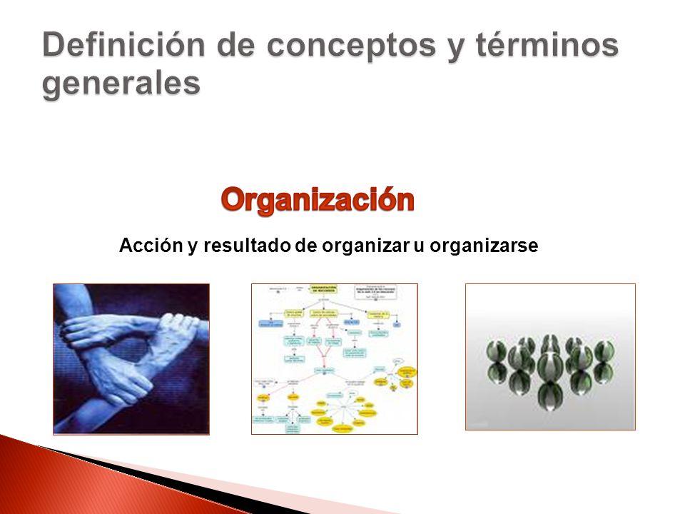 Acción y resultado de organizar u organizarse