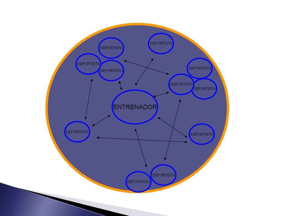 Grado de aceptación de objetivos Nivel de comunicación Conformidad con las normas Perseverancia ante la dificultad Percepción de equipo Satisfacción personal Motivación Estabilidad