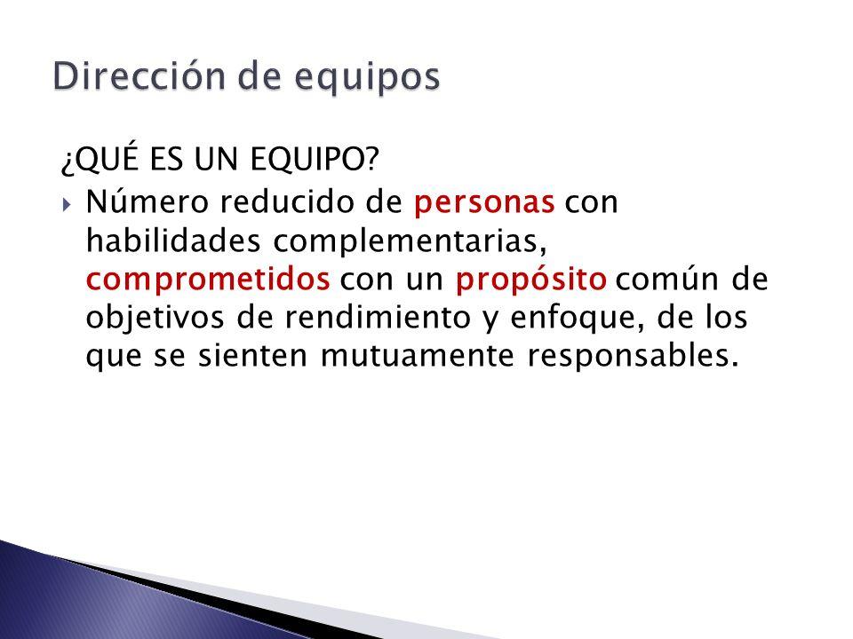 SATISFACCIÓN EN EL EQUIPO Autonomía/iniciativa Relaciones interpersonales Reconocimiento y valoración Expectativas Desafío en el trabajo y presión Implicación