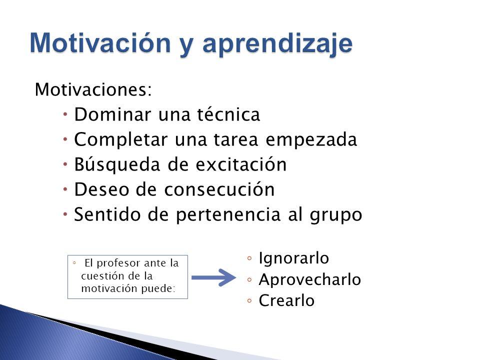 Motivaciones: Dominar una técnica Completar una tarea empezada Búsqueda de excitación Deseo de consecución Sentido de pertenencia al grupo El profesor