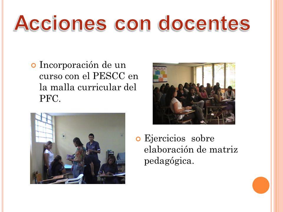 Ejercicios sobre elaboración de matriz pedagógica. Incorporación de un curso con el PESCC en la malla curricular del PFC.