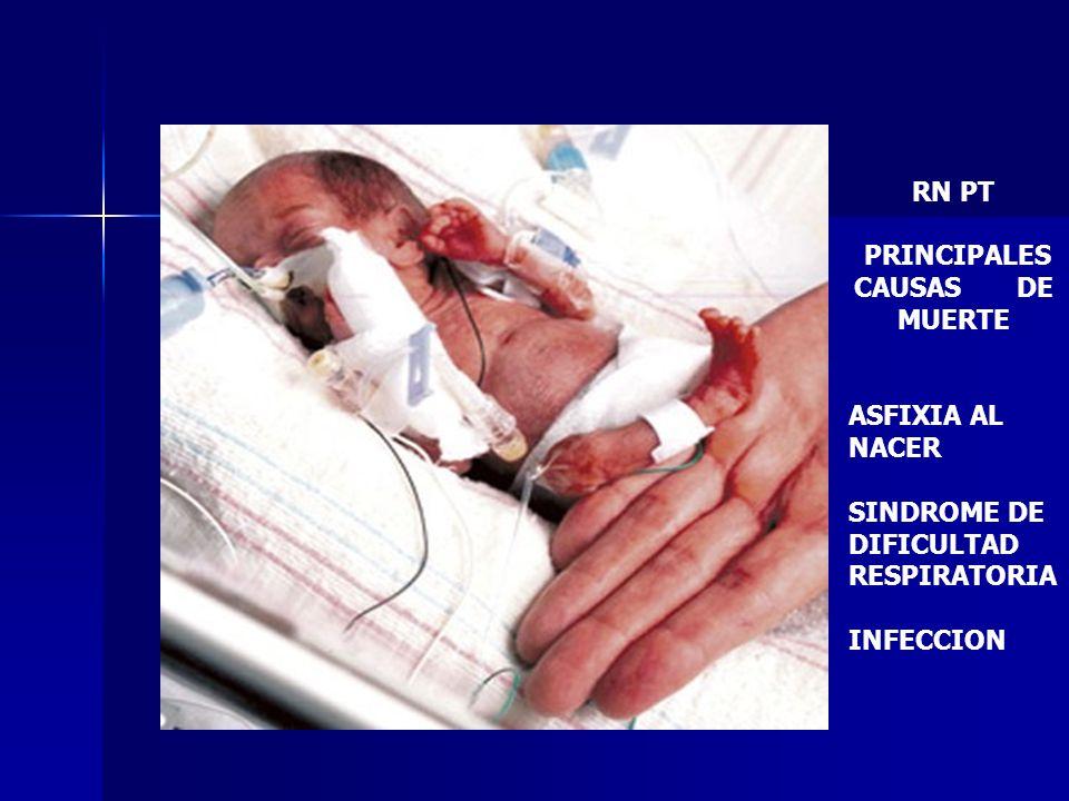 RN PT PRINCIPALES CAUSAS DE MUERTE ASFIXIA AL NACER SINDROME DE DIFICULTAD RESPIRATORIA INFECCION