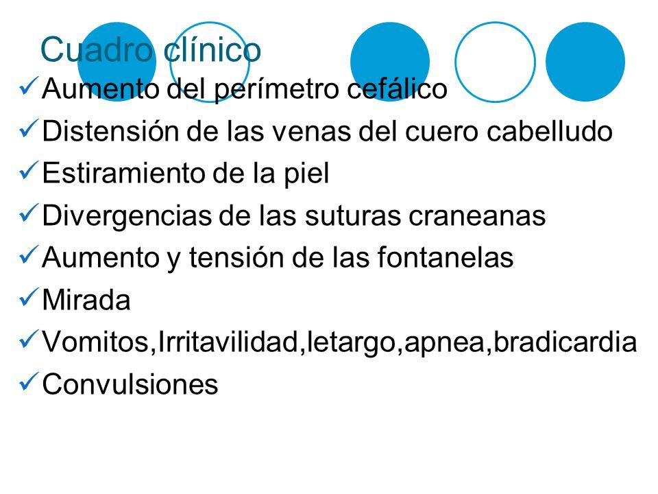 Cuadro clínico Aumento del perímetro cefálico Distensión de las venas del cuero cabelludo Estiramiento de la piel Divergencias de las suturas craneana