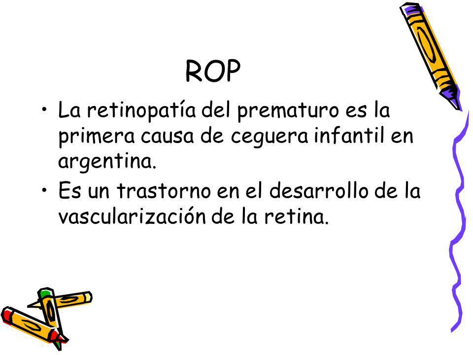 ROP La retinopatía del prematuro es la primera causa de ceguera infantil en argentina. Es un trastorno en el desarrollo de la vascularización de la re