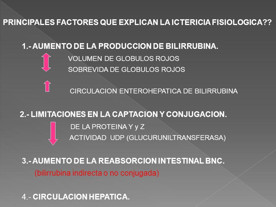 PRINCIPALES FACTORES QUE EXPLICAN LA ICTERICIA FISIOLOGICA?? 1.- AUMENTO DE LA PRODUCCION DE BILIRRUBINA. VOLUMEN DE GLOBULOS ROJOS SOBREVIDA DE GLOBU
