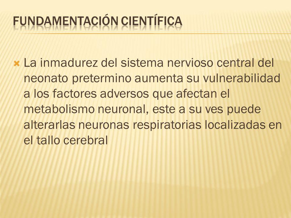 La inmadurez del sistema nervioso central del neonato pretermino aumenta su vulnerabilidad a los factores adversos que afectan el metabolismo neuronal